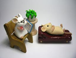 mice in therapy